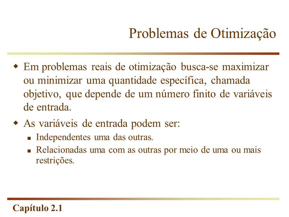 Capítulo 2.1 Programação Linear Hipótese de Aditividade Considera as atividades (variáveis de decisão) do modelo como entidades totalmente independentes, não permitindo que haja interdependência entre as mesmas, isto é, não permitindo a existência de termos cruzados, tanto na função-objetivo como nas restrições.