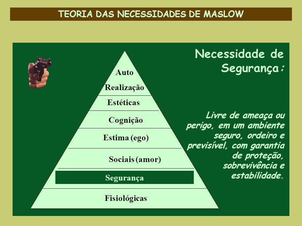 TEORIA DAS NECESSIDADES DE MASLOW Necessidade de Segurança: Livre de ameaça ou perigo, em um ambiente seguro, ordeiro e previsível, com garantia de pr