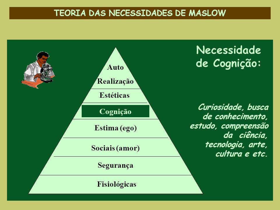 TEORIA DAS NECESSIDADES DE MASLOW Necessidade de Cognição: Curiosidade, busca de conhecimento, estudo, compreensão da ciência, tecnologia, arte, cultu