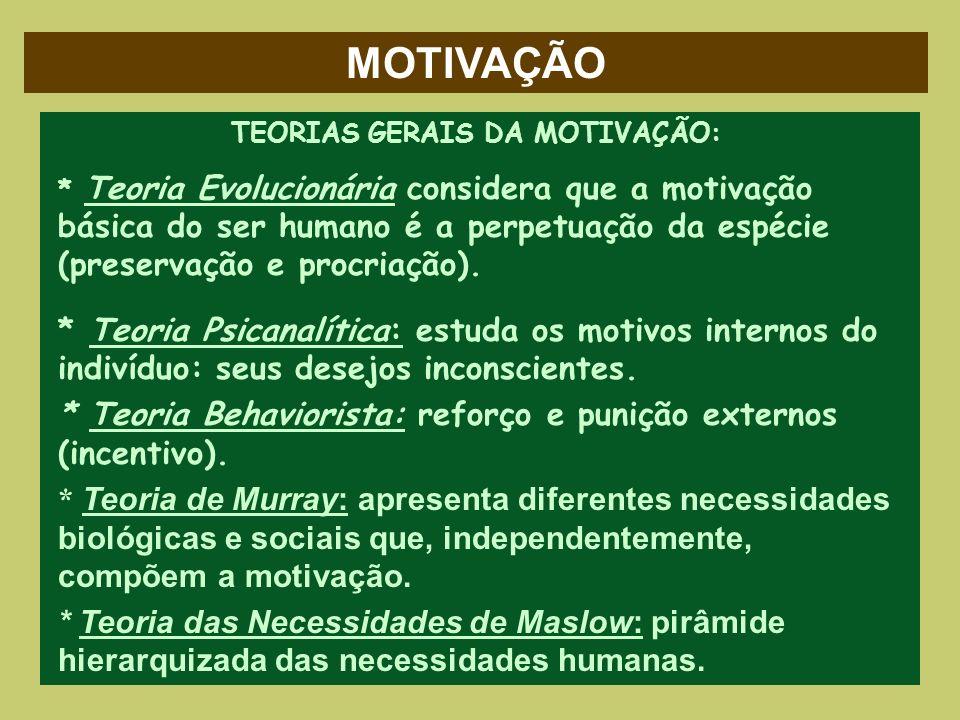 MOTIVAÇÃO TEORIAS GERAIS DA MOTIVAÇÃO: * Teoria Evolucionária considera que a motivação básica do ser humano é a perpetuação da espécie (preservação e