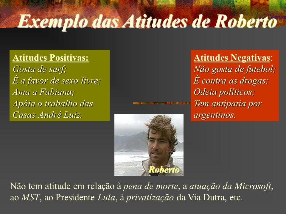 Atitudes Positivas: Gosta de surf; É a favor de sexo livre; Ama a Fabiana; Apóia o trabalho das Casas André Luiz.