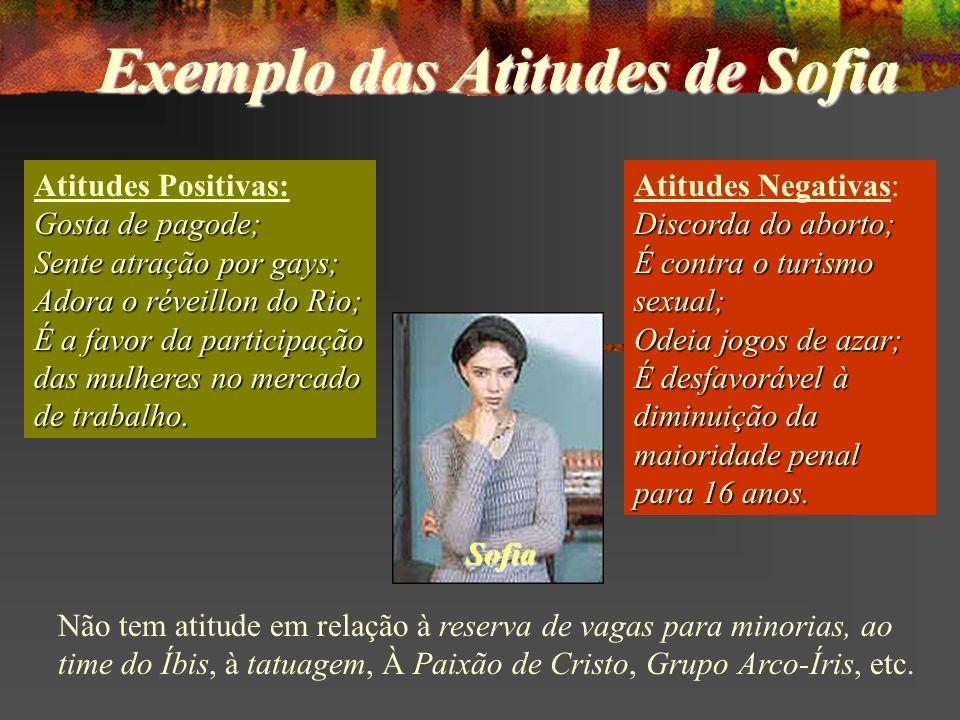 Atitudes Positivas: Gosta de pagode; Sente atração por gays; Adora o réveillon do Rio; É a favor da participação das mulheres no mercado de trabalho.