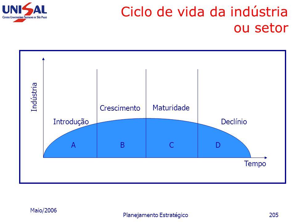 Maio/2006 Planejamento Estratégico204 Tipos básicos de estratégias Predominância de pontos fracos Predominância de pontos fortes I N T E R N O Postura