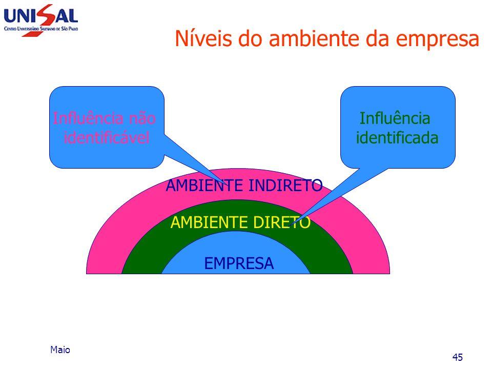 Maio/2006 Planejamento Estratégico44 Fase I - Diagnóstico estratégico Naturalmente, o executivo deve saber trabalhar com essas variáveis, pois, a part