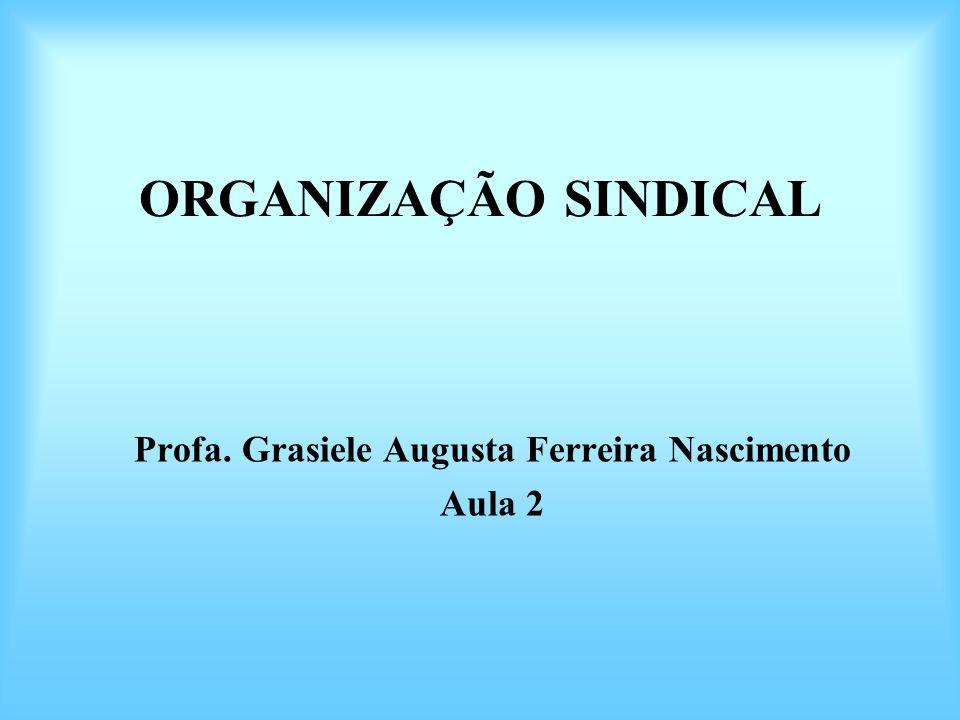 ORGANIZAÇÃO SINDICAL Profa. Grasiele Augusta Ferreira Nascimento Aula 2