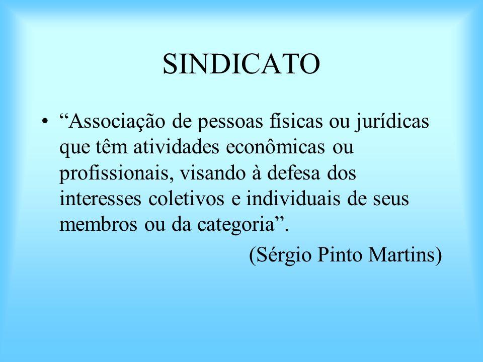 SINDICATO Associação de pessoas físicas ou jurídicas que têm atividades econômicas ou profissionais, visando à defesa dos interesses coletivos e indiv