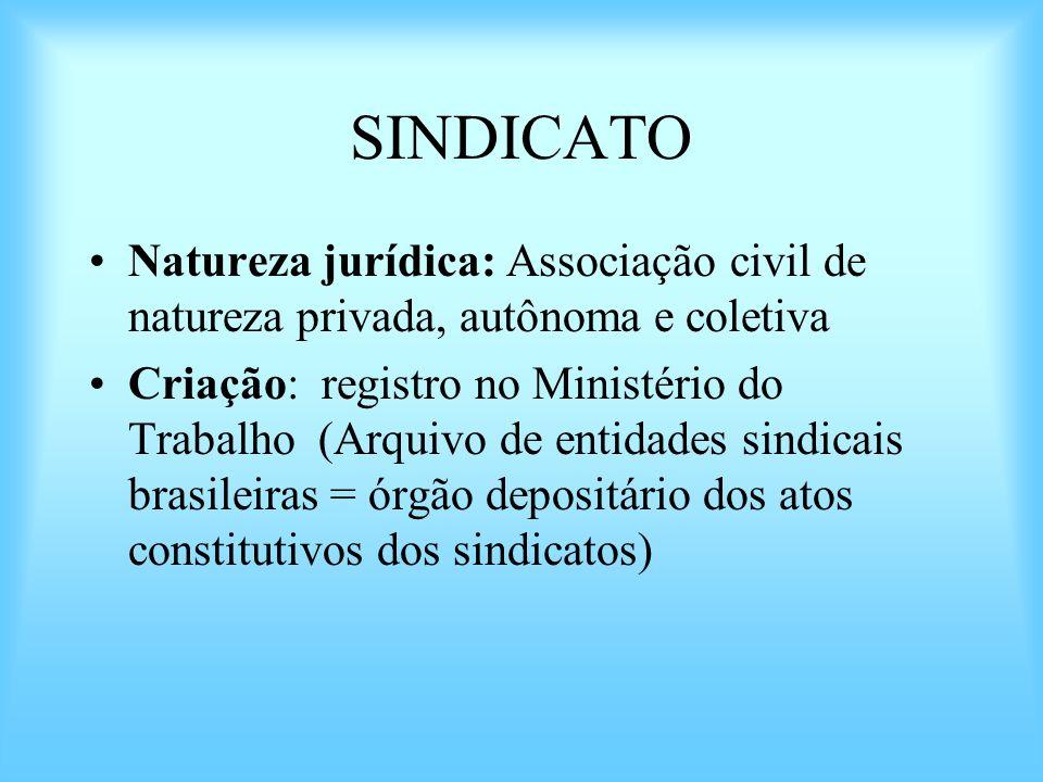 SINDICATO Natureza jurídica: Associação civil de natureza privada, autônoma e coletiva Criação: registro no Ministério do Trabalho (Arquivo de entidad