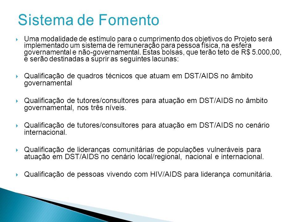 Uma modalidade de estímulo para o cumprimento dos objetivos do Projeto será implementado um sistema de remuneração para pessoa física, na esfera gover