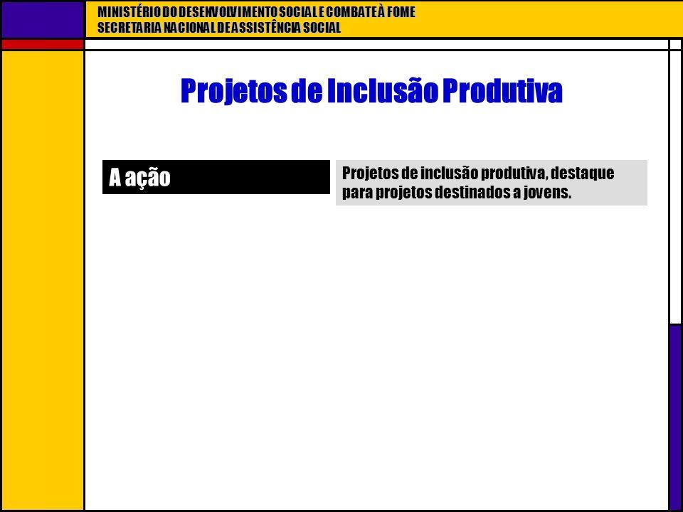 MINISTÉRIO DO DESENVOLVIMENTO SOCIAL E COMBATE À FOME SECRETARIA NACIONAL DE ASSISTÊNCIA SOCIAL Projetos de Inclusão Produtiva A ação Projetos de incl