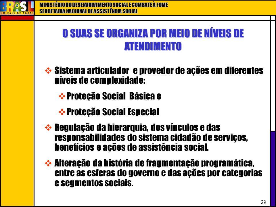 MINISTÉRIO DO DESENVOLVIMENTO SOCIAL E COMBATE À FOME SECRETARIA NACIONAL DE ASSISTÊNCIA SOCIAL 29 O SUAS SE ORGANIZA POR MEIO DE NÍVEIS DE ATENDIMENT