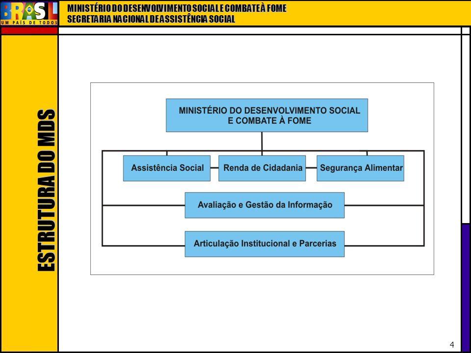 MINISTÉRIO DO DESENVOLVIMENTO SOCIAL E COMBATE À FOME SECRETARIA NACIONAL DE ASSISTÊNCIA SOCIAL 35 Com o SUAS – Fortalecimento da relação entre gestão, financiamento e controle social Definição do campo de intervenção da política de assistência social, com unificação de conceitos básicos; Enfoque na proteção social, com a configuração de um sistema que reorganiza as ações por níveis de complexidade e projeta a universalização e a eqüidade; Base de atuação territorial, com centralidade na família; Novo pacto federativo, com ordenamento da gestão descentralizada e participativa;