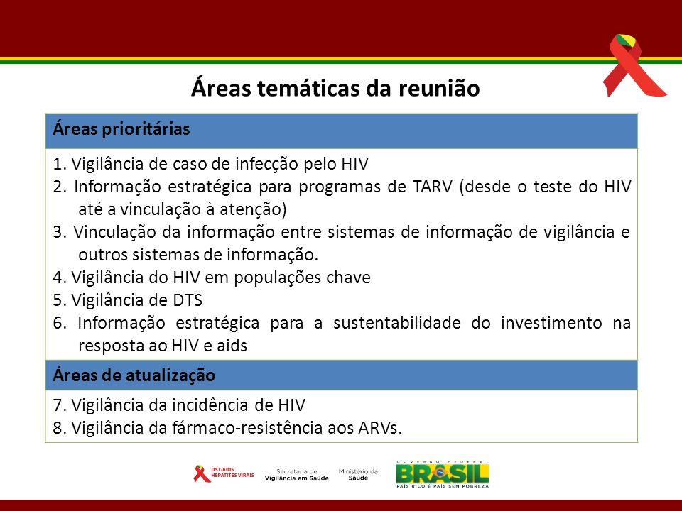 Áreas temáticas da reunião Áreas prioritárias 1. Vigilância de caso de infecção pelo HIV 2. Informação estratégica para programas de TARV (desde o tes