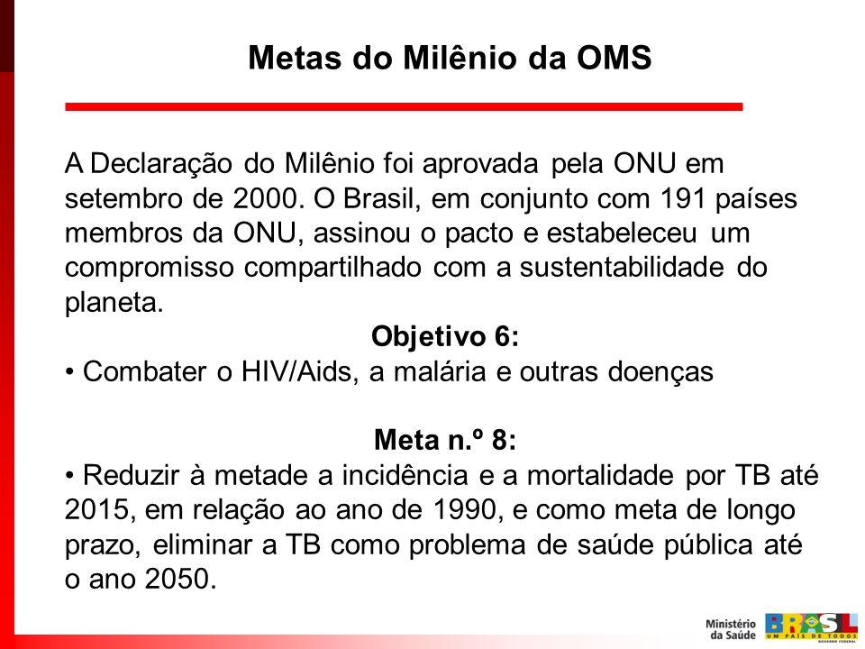 A Declaração do Milênio foi aprovada pela ONU em setembro de 2000. O Brasil, em conjunto com 191 países membros da ONU, assinou o pacto e estabeleceu