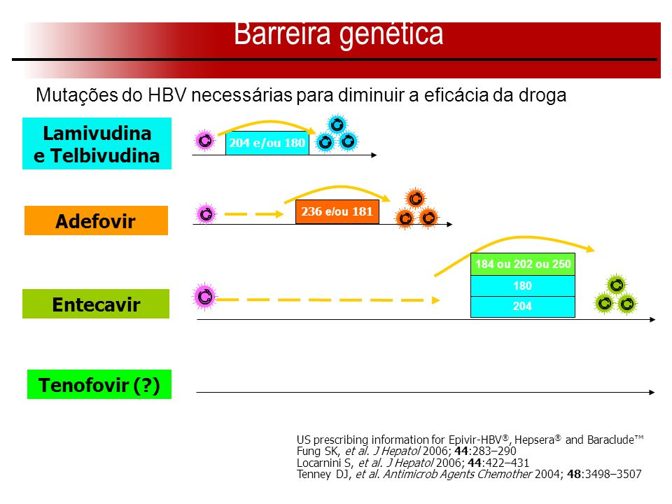 204 180 184 ou 202 ou 250 US prescribing information for Epivir-HBV ®, Hepsera ® and Baraclude Fung SK, et al. J Hepatol 2006; 44:283–290 Locarnini S,