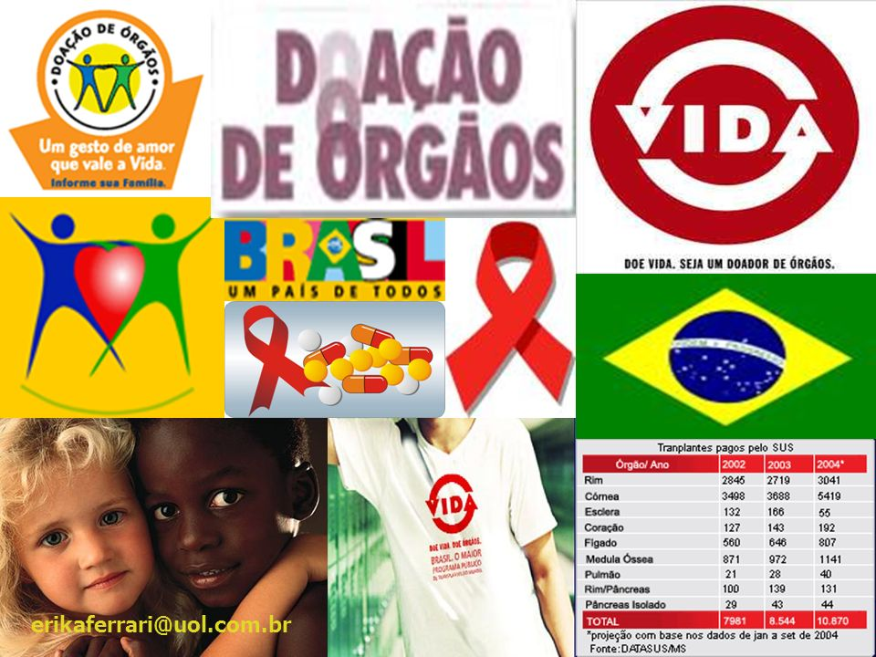 erikaferrari@uol.com.br