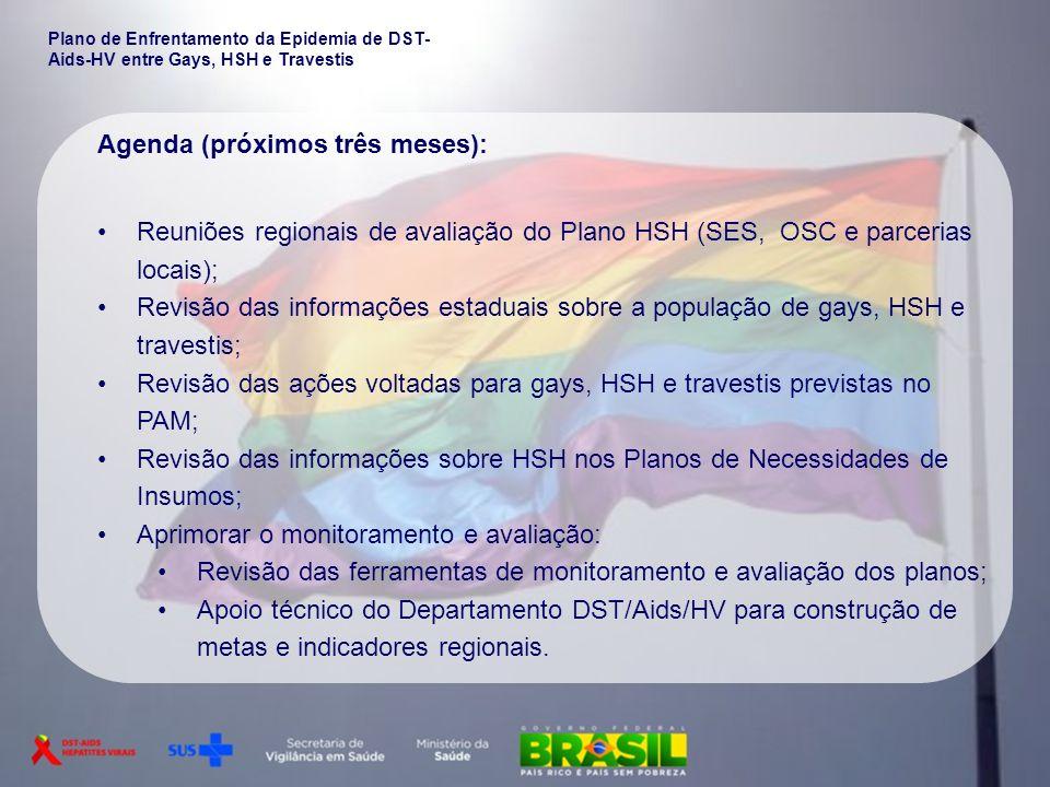 Plano de Enfrentamento da Epidemia de DST- Aids-HV entre Gays, HSH e Travestis Agenda (próximos três meses): Reuniões regionais de avaliação do Plano