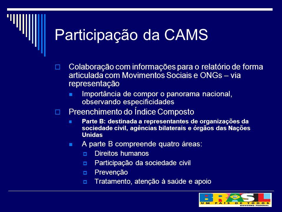 Participação da CAMS Colaboração com informações para o relatório de forma articulada com Movimentos Sociais e ONGs – via representação Importância de
