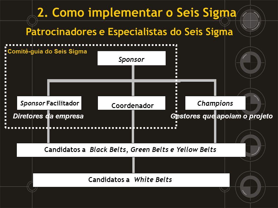 Patrocinadores e Especialistas do Seis Sigma Champions Candidatos a Black Belts, Green Belts e Yellow Belts Sponsor Comitê-guia do Seis Sigma Coordena