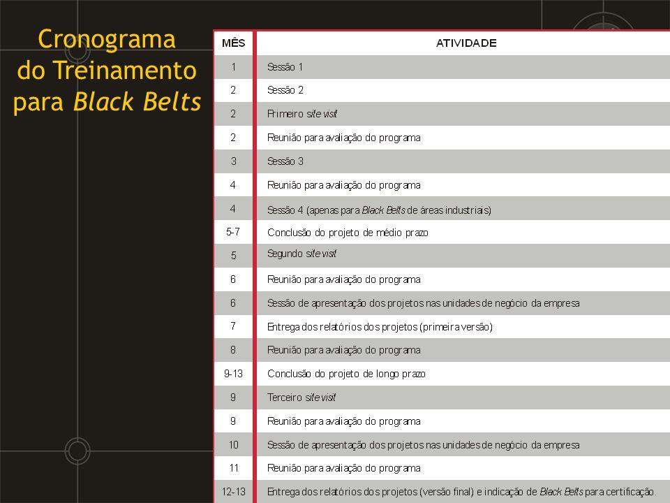 Cronograma do Treinamento para Black Belts
