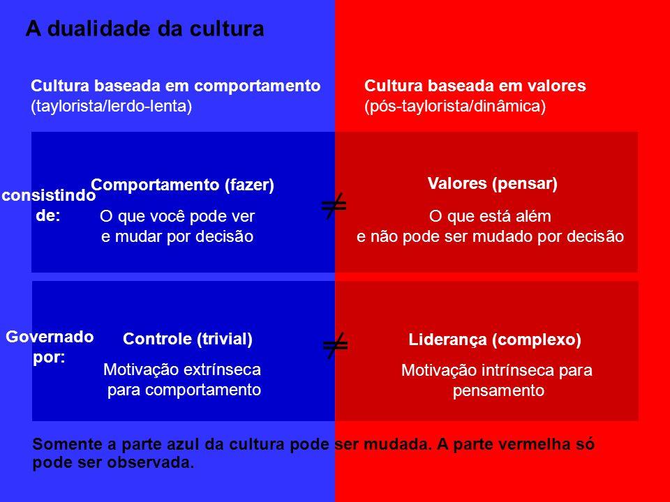 A dualidade da cultura Somente a parte azul da cultura pode ser mudada. A parte vermelha só pode ser observada. Comportamento (fazer) Valores (pensar)