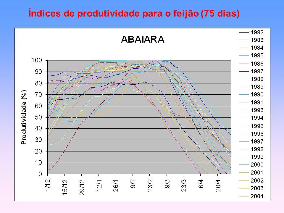 Índices de produtividade para o feijão (75 dias)