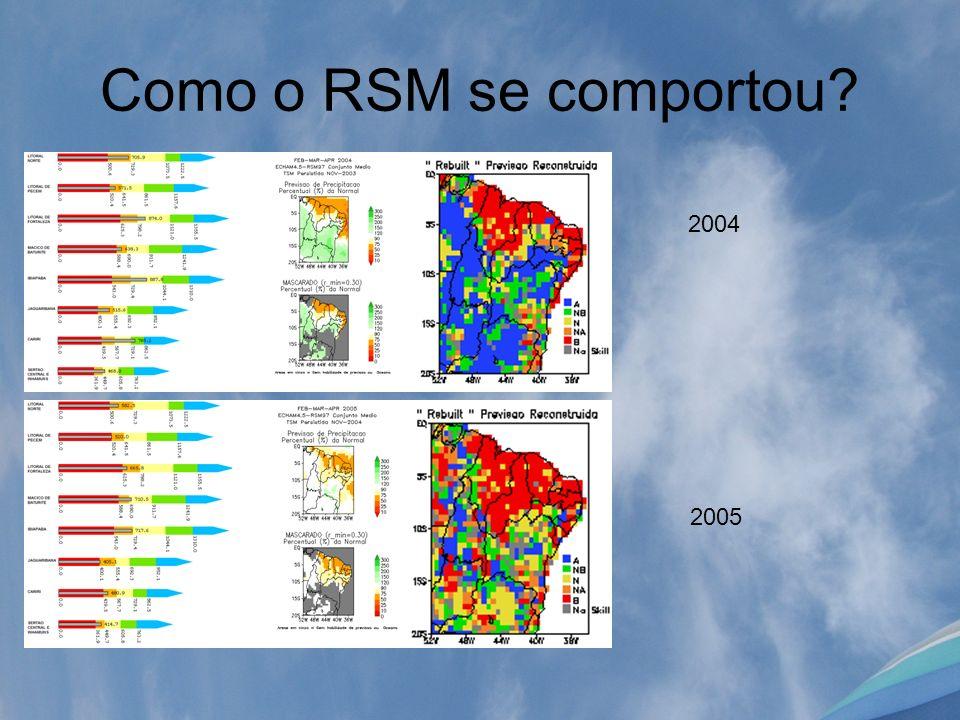 Como o RSM se comportou? 2004 2005