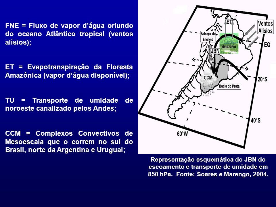 Representação esquemática do JBN do escoamento e transporte de umidade em 850 hPa. Fonte: Soares e Marengo, 2004. FNE = Fluxo de vapor dágua oriundo d