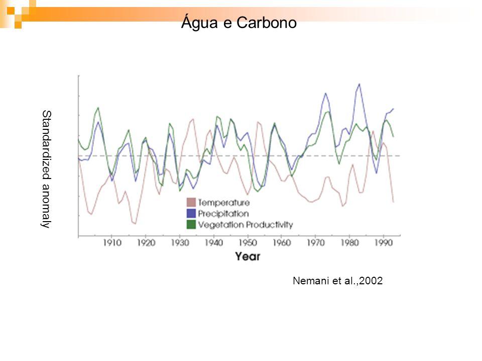 Standardized anomaly Nemani et al.,2002 Água e Carbono