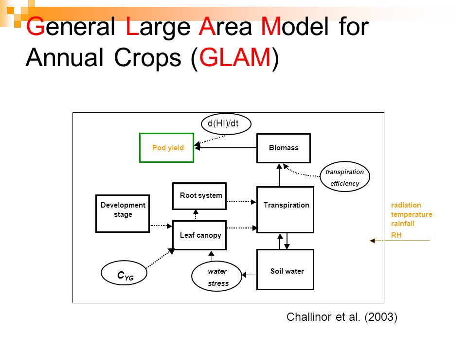 General Large Area Model for Annual Crops (GLAM) d(HI)/dt Pod yieldBiomass transpiration efficiency Root system DevelopmentTranspirationradiation stag