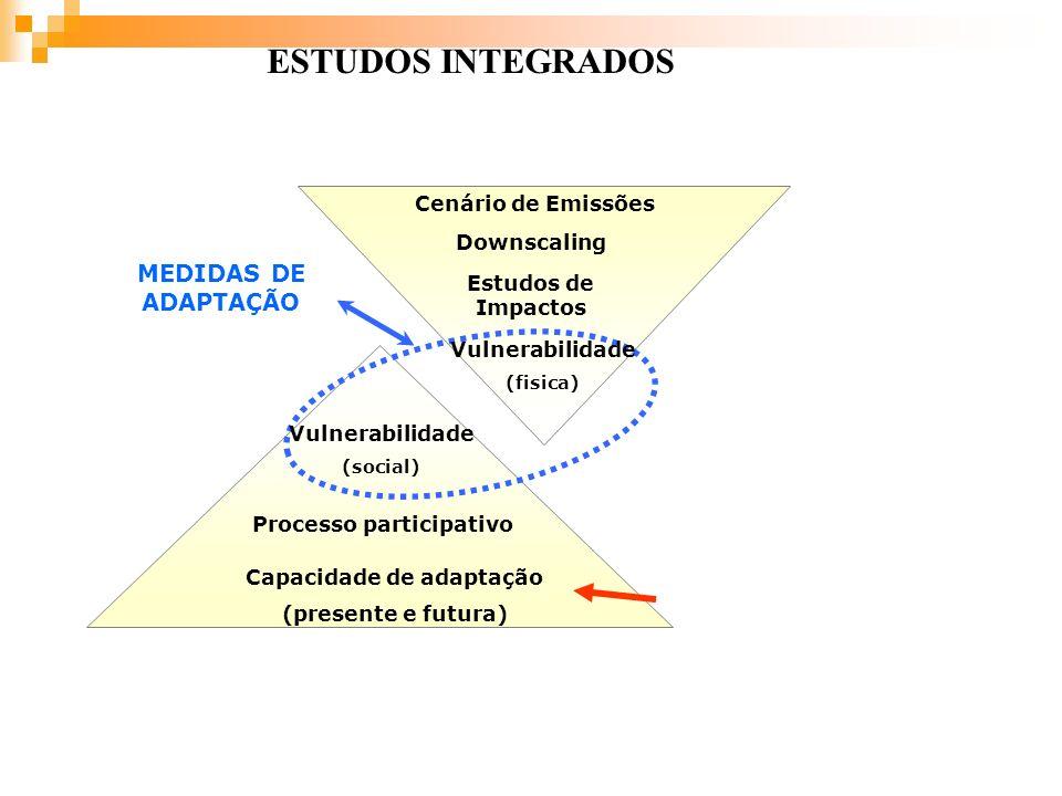 Cenário de Emissões Downscaling Estudos de Impactos Vulnerabilidade (fisica) Capacidade de adaptação (presente e futura) Processo participativo Vulner