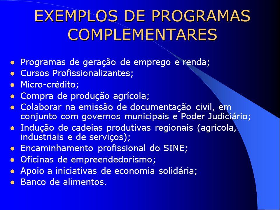 EXEMPLOS DE PROGRAMAS COMPLEMENTARES Programas de geração de emprego e renda; Cursos Profissionalizantes; Micro-crédito; Compra de produção agrícola;