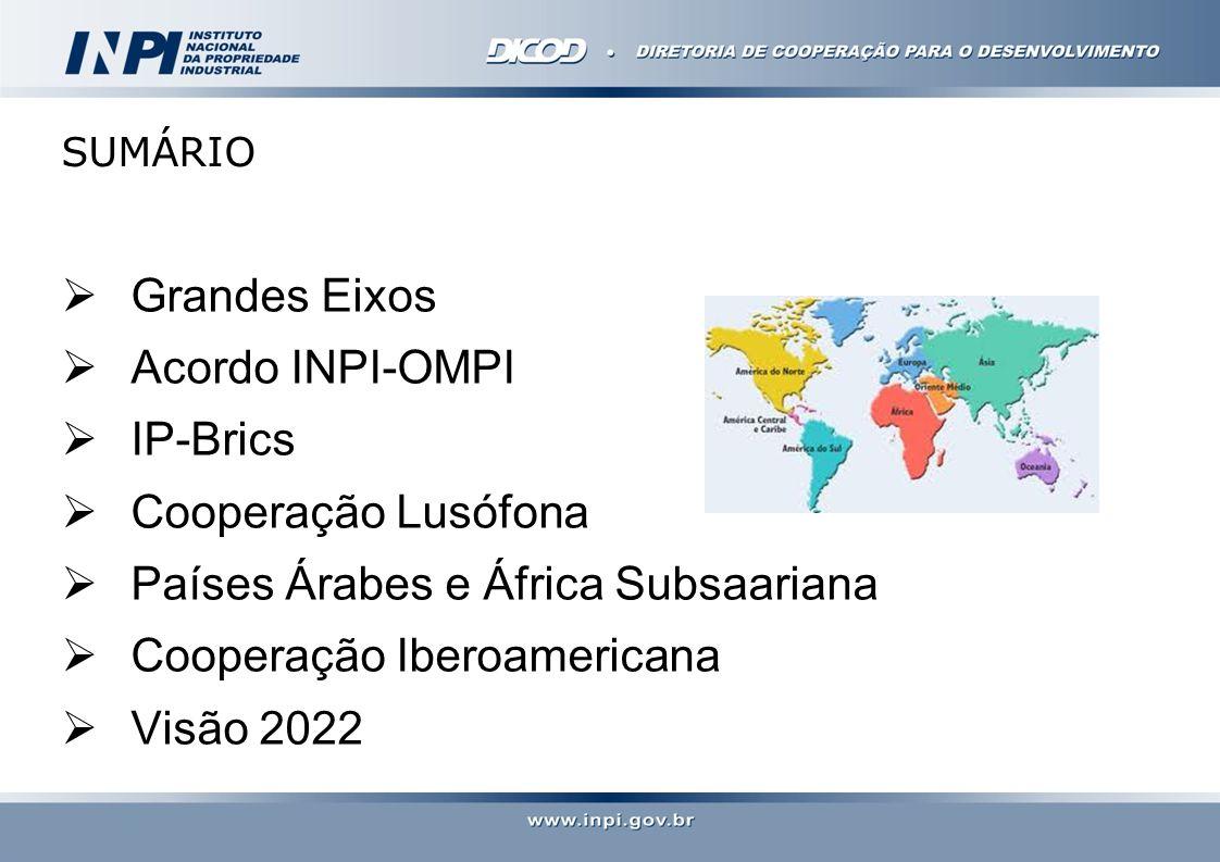 SUMÁRIO Grandes Eixos Acordo INPI-OMPI IP-Brics Cooperação Lusófona Países Árabes e África Subsaariana Cooperação Iberoamericana Visão 2022