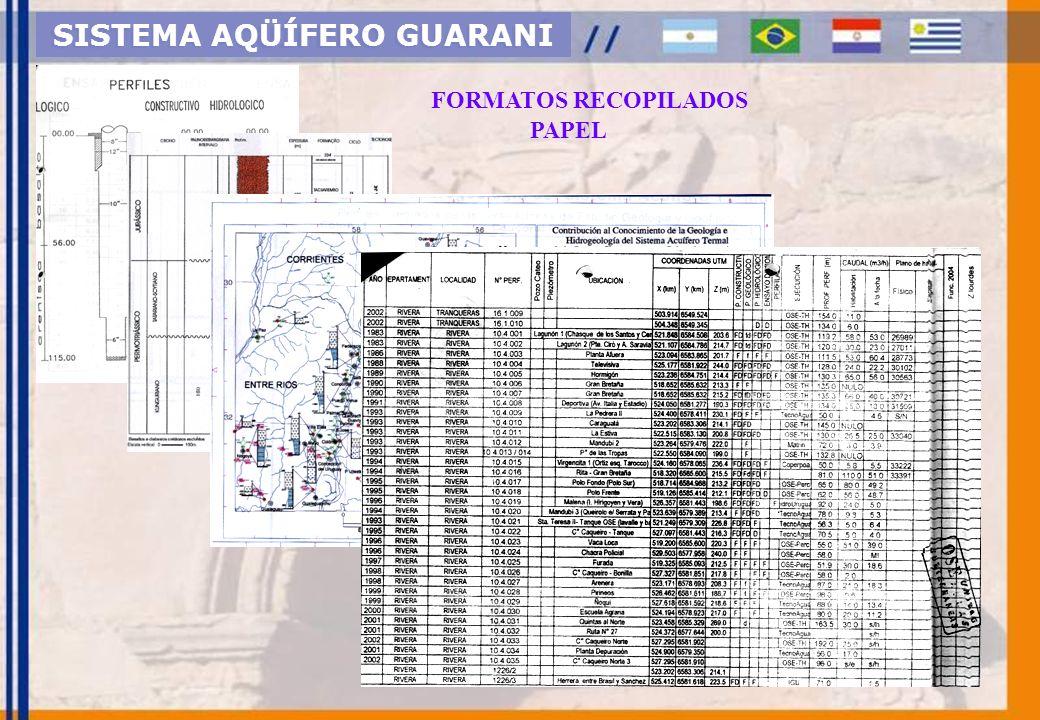 SISTEMA AQÜÍFERO GUARANI FORMATOS RECOPILADOS DIGITAL: Alfanuméricos e Texto (Excel, Word, PDF)