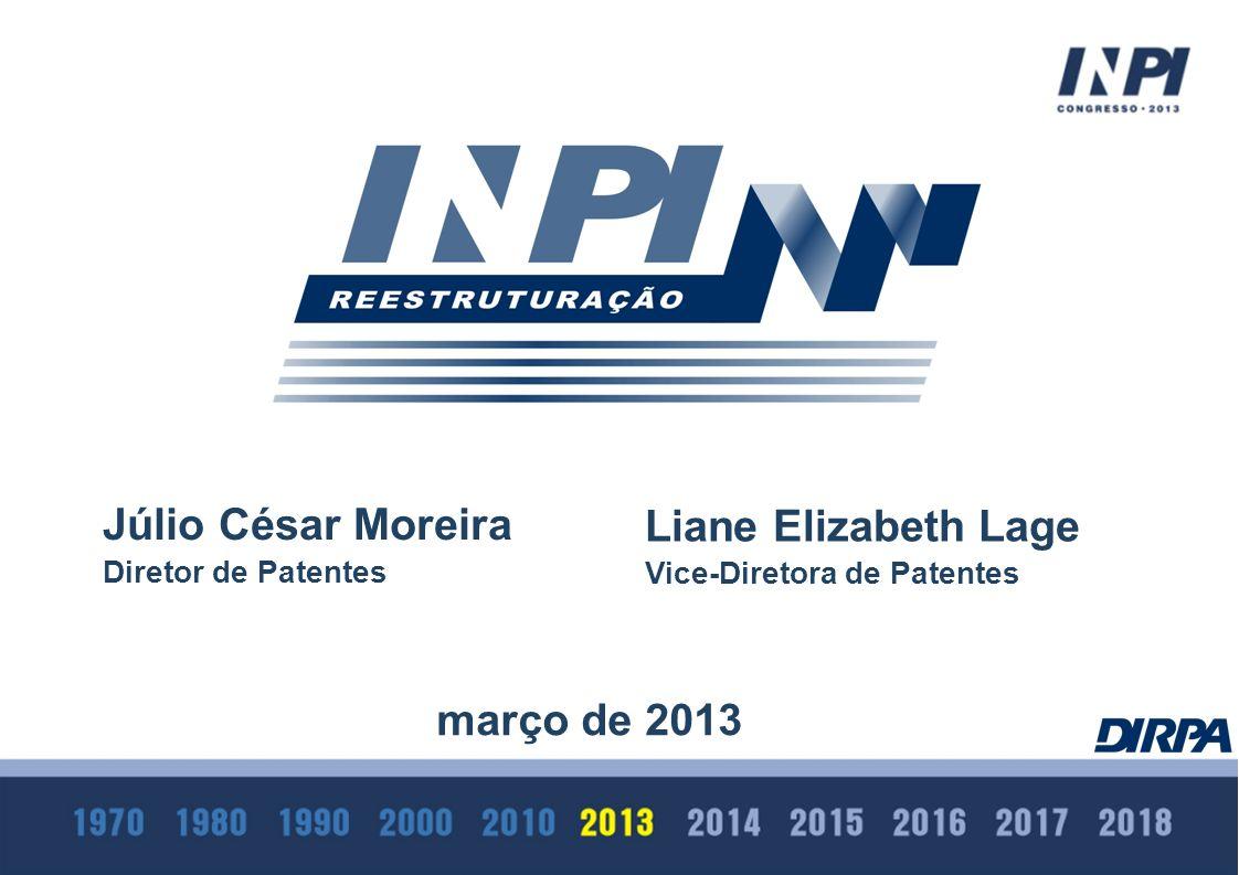 Júlio César Moreira Diretor de Patentes março de 2013 Liane Elizabeth Lage Vice-Diretora de Patentes