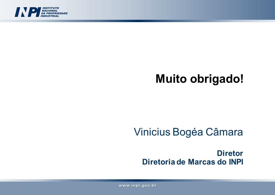 Vinicius Bogéa Câmara Diretor Diretoria de Marcas do INPI Muito obrigado!