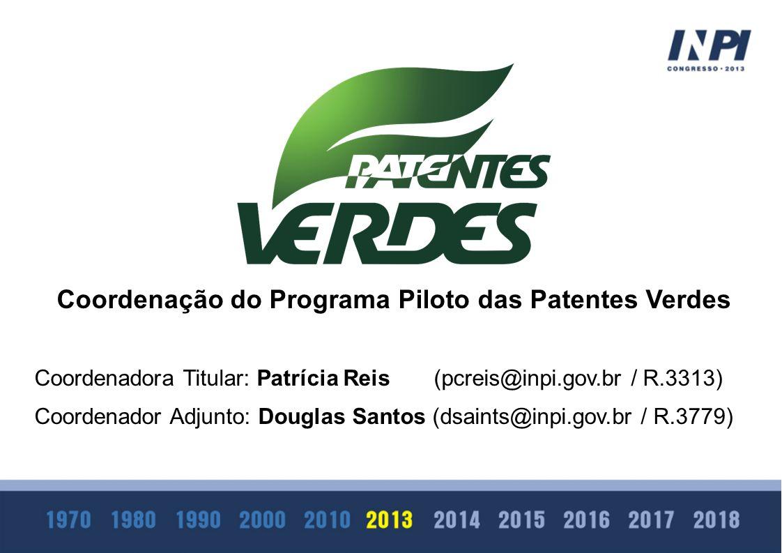 Coordenação do Programa Piloto das Patentes Verdes Coordenadora Titular: Patrícia Reis (pcreis@inpi.gov.br / R.3313) Coordenador Adjunto: Douglas Sant