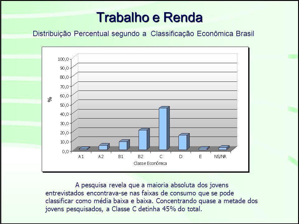 Trabalho e Renda Distribuição Percentual segundo a Classificação Econômica Brasil A pesquisa revela que a maioria absoluta dos jovens entrevistados encontrava-se nas faixas de consumo que se pode classificar como média baixa e baixa.