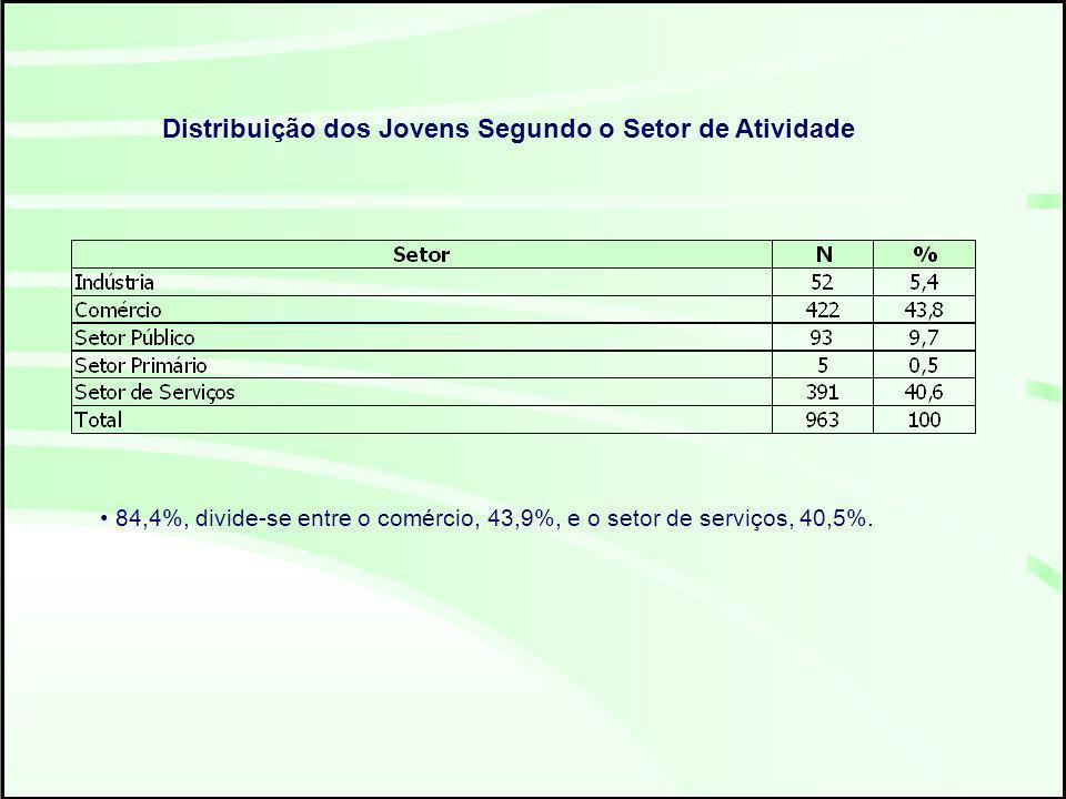 84,4%, divide-se entre o comércio, 43,9%, e o setor de serviços, 40,5%.