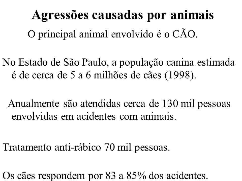 Agressões causadas por animais O principal animal envolvido é o CÃO. No Estado de São Paulo, a população canina estimada é de cerca de 5 a 6 milhões d
