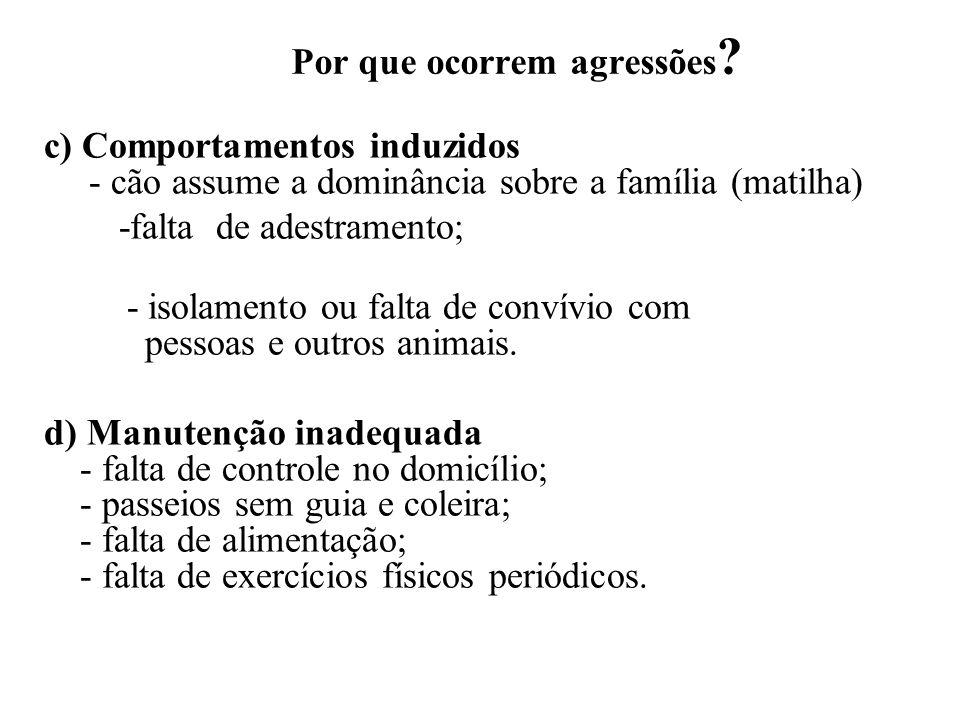 Por que ocorrem agressões ? c) Comportamentos induzidos - cão assume a dominância sobre a família (matilha) -falta de adestramento; - isolamento ou fa