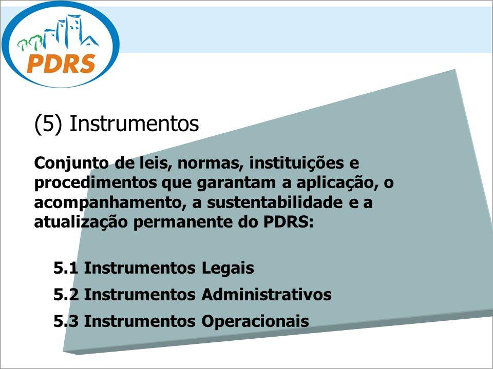 (5) Instrumentos Conjunto de leis, normas, instituições e procedimentos que garantam a aplicação, o acompanhamento, a sustentabilidade e a atualização