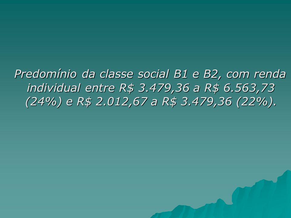Predomínio da classe social B1 e B2, com renda individual entre R$ 3.479,36 a R$ 6.563,73 (24%) e R$ 2.012,67 a R$ 3.479,36 (22%). Predomínio da class