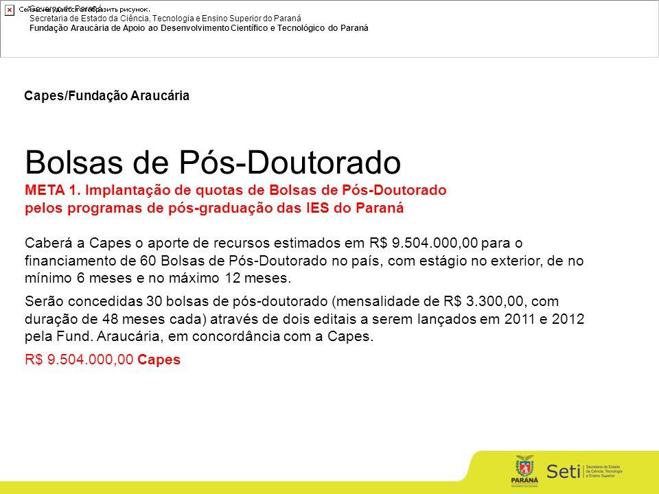 Governo do Paraná Secretaria de Estado da Ciência, Tecnologia e Ensino Superior do Paraná Fundação Araucária de Apoio ao Desenvolvimento Científico e Tecnológico do Paraná Capes/Fundação Araucária Bolsas de Pós-Doutorado META 1.