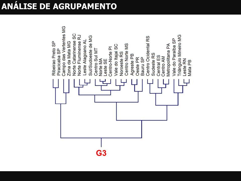 G3 ANÁLISE DE AGRUPAMENTO