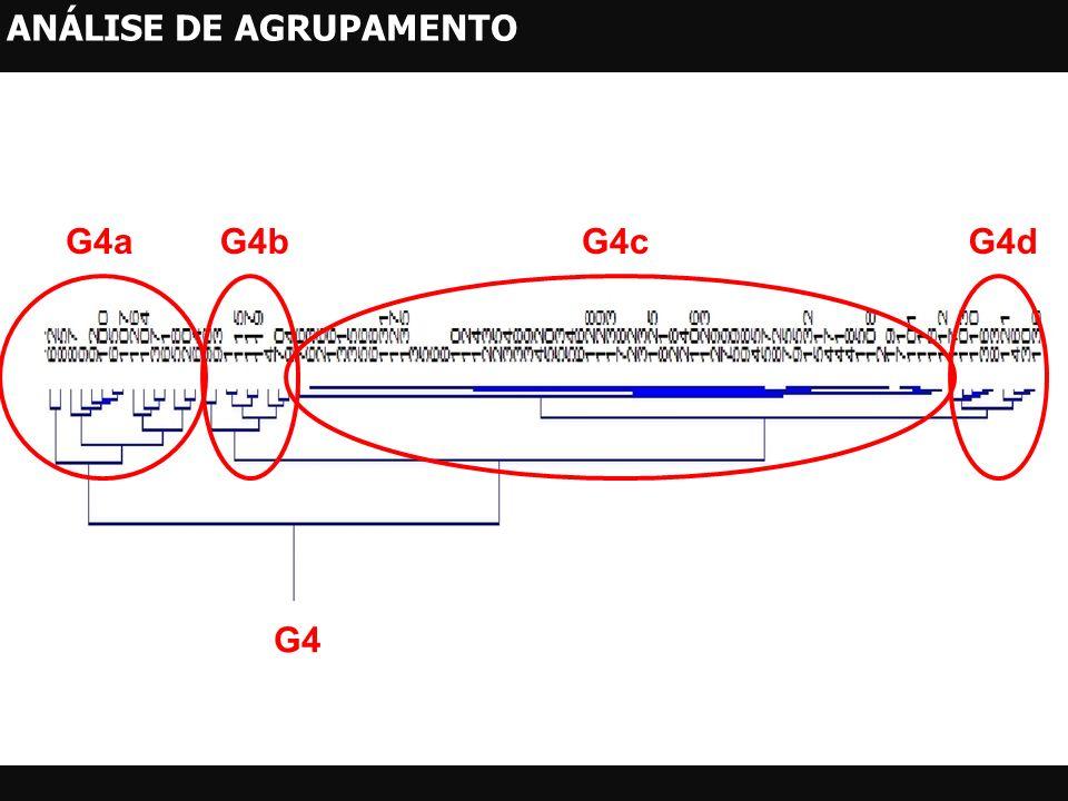 G4 G4aG4bG4cG4d ANÁLISE DE AGRUPAMENTO