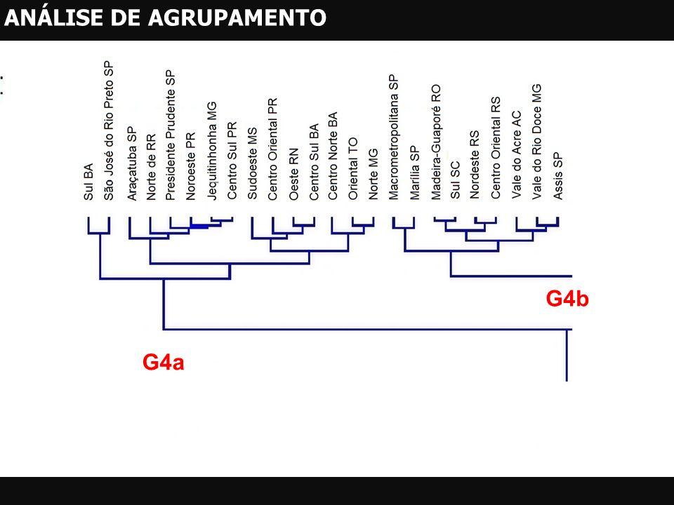 G4a G4b ANÁLISE DE AGRUPAMENTO