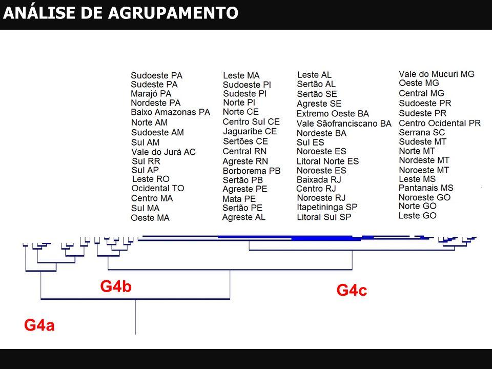 G4c G4a G4b ANÁLISE DE AGRUPAMENTO
