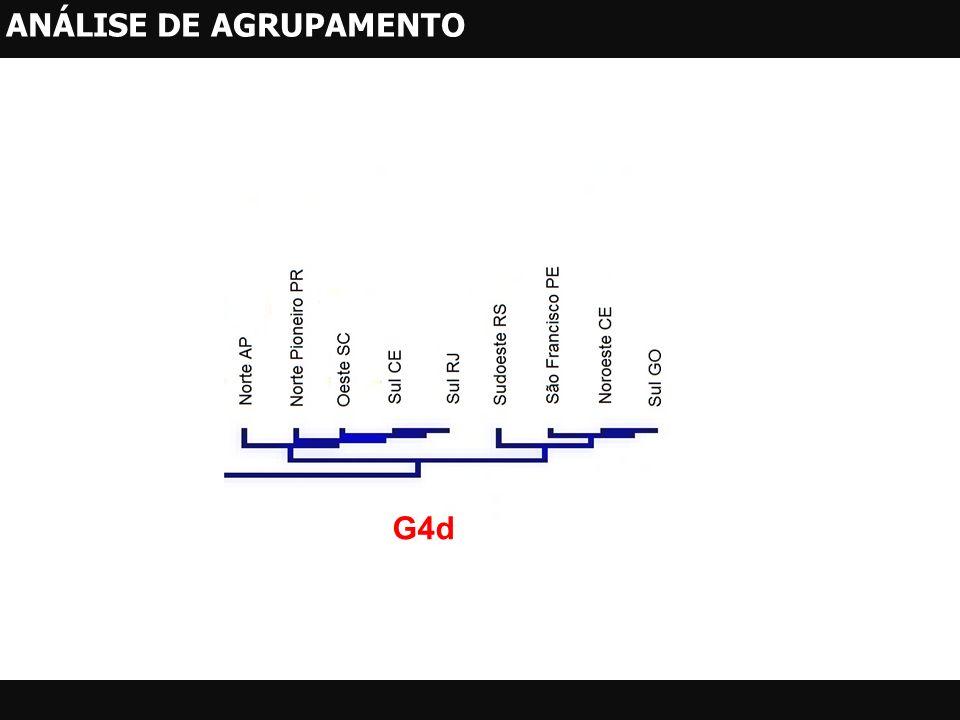 G4d ANÁLISE DE AGRUPAMENTO