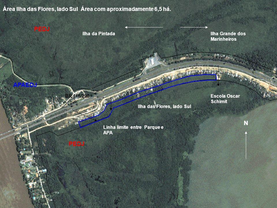 Linha limite entre Parque e APA APAEDJ PEDJ N Ilha das Flores, lado Sul BR 116/290 Ilha Grande dos Marinheiros Ilha da Pintada Escola Oscar Schimit Ár