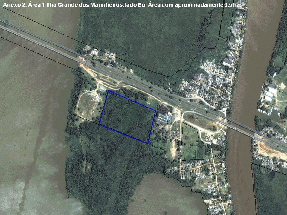Anexo 2: Área 1 Ilha Grande dos Marinheiros, lado Sul Área com aproximadamente 6,5 ha.